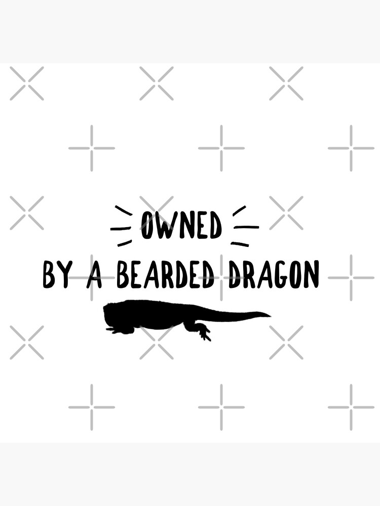 Owned By A Bearded Dragon by snibbo71