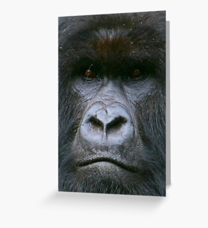 Intensity Greeting Card