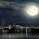 Starry Night ©  by Dawn Becker