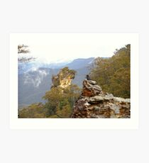 Perch with a view Art Print