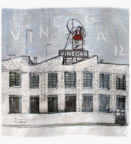 Vinegar girl .... Poster