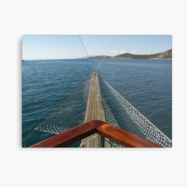 Day cruise Metal Print