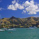 Akaroa Harbour, NZ by Stecar