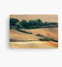 Tuscan Zigzag-Pienza Canvas Print