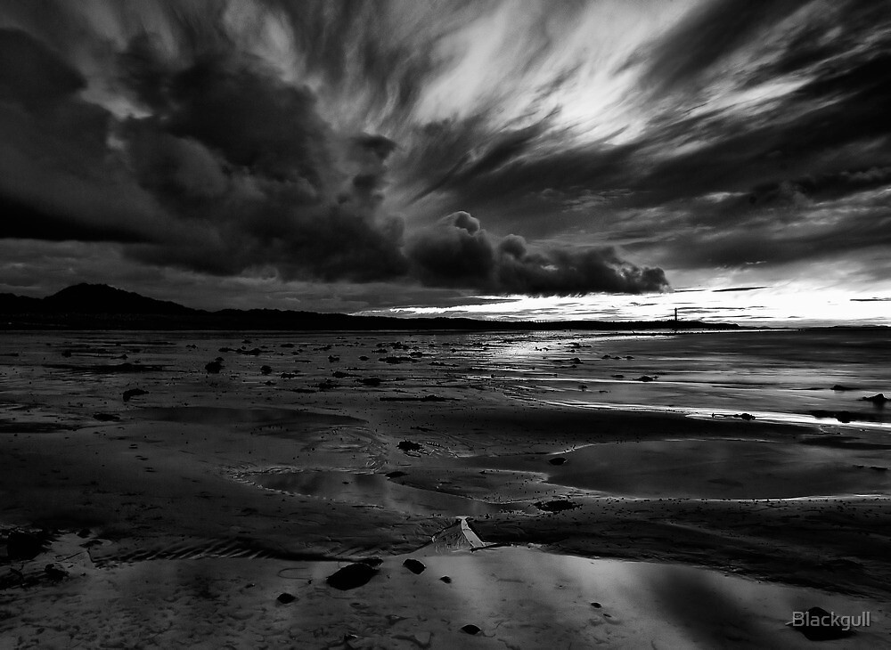 Seaweed On The Tide by Blackgull