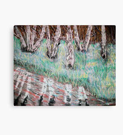 Birchwood reflections Canvas Print