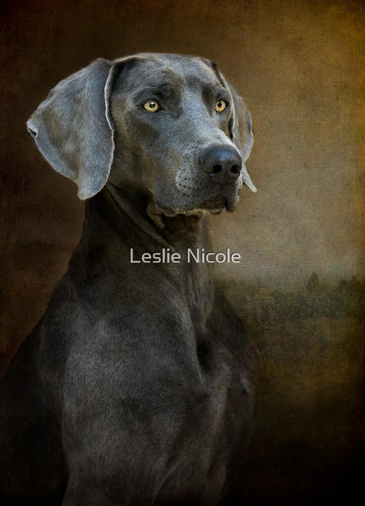 Renaissance Blue by Leslie Nicole