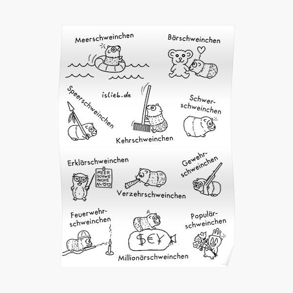 Meerschweinchen Poster