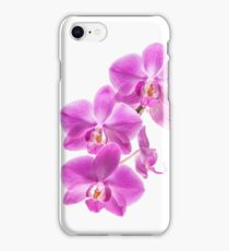 Orchid - 70 iPhone Case/Skin