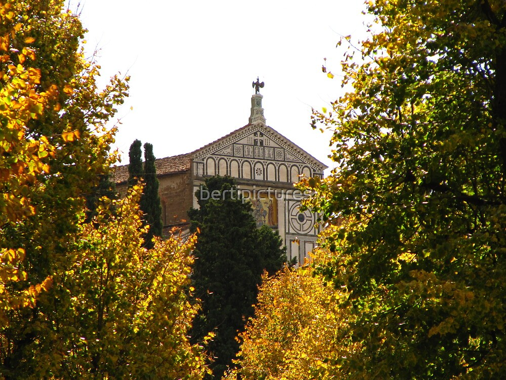 San Miniato al Monte (Firenze)-Italy by bertipictures