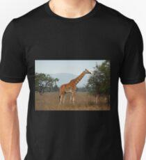 Rothschild's Giraffe, Lake Nakuru, Kenya Unisex T-Shirt