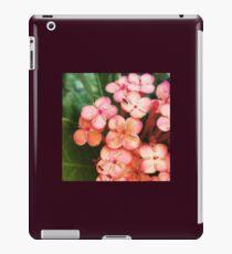 Macro #2 iPad Case/Skin
