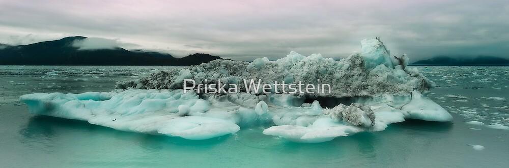 Columbia Bay by Priska Wettstein