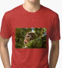 Northern Saw Whet Owl - Amherst Island, Ontario, Canada Tri-blend T-Shirt