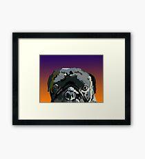 Chico Framed Print