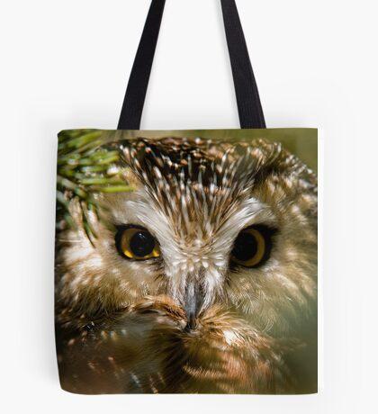 Northern Saw Whet Owl Tote Bag