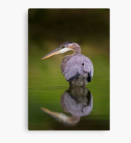 GBH reflection Canvas Print