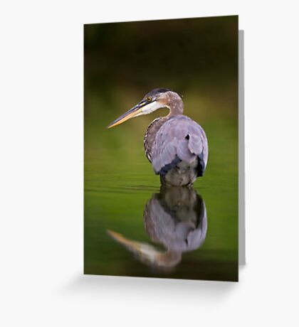 GBH reflection Greeting Card