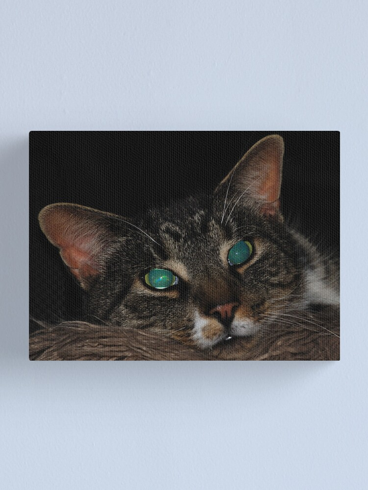 Alternate view of Staring into Space Canvas Print