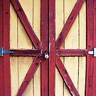 Classic Shed Door by DearMsWildOne