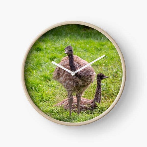 Baby Emus Clock