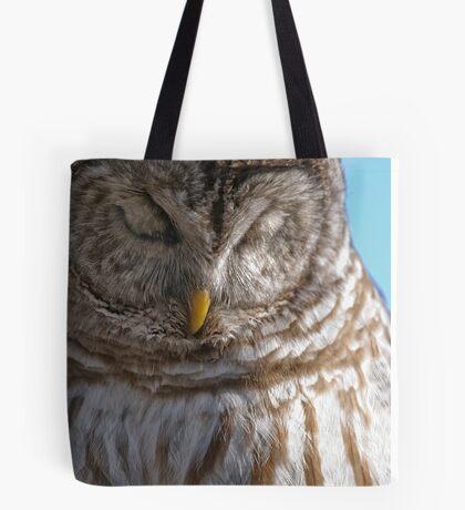 Barred Owl in Tree - Brighton, Ontario Tote Bag