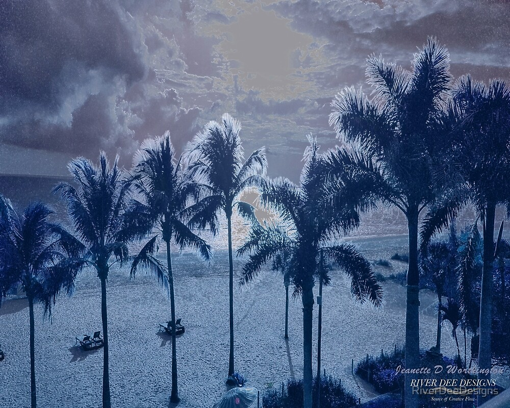 The Gentle Side Of Night - Blue Palm Line by RiverDeeDesigns