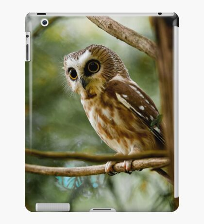 Northern Saw Whet Owl iPad Case/Skin