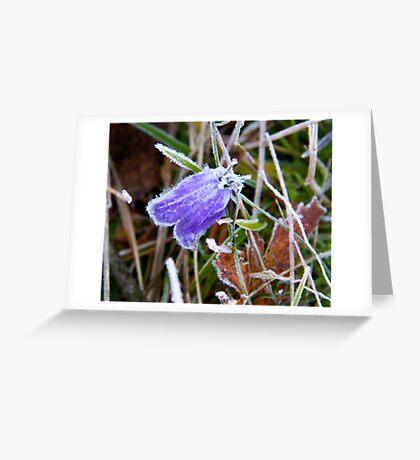 Frozen beauty Greeting Card