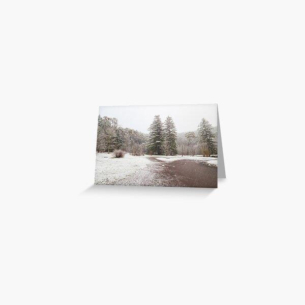 Snow on Mt Franklin Greeting Card
