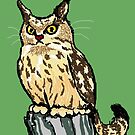 Cat-Owl Scowl by sneercampaign