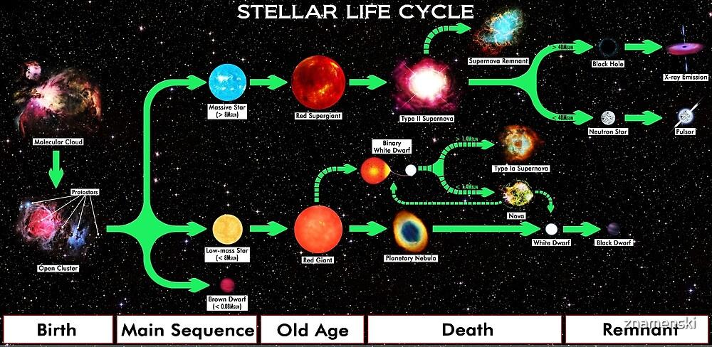 #Stellar #Life #Cycle by znamenski
