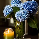 Fresh Picked by Candlelight by PhotoKismet