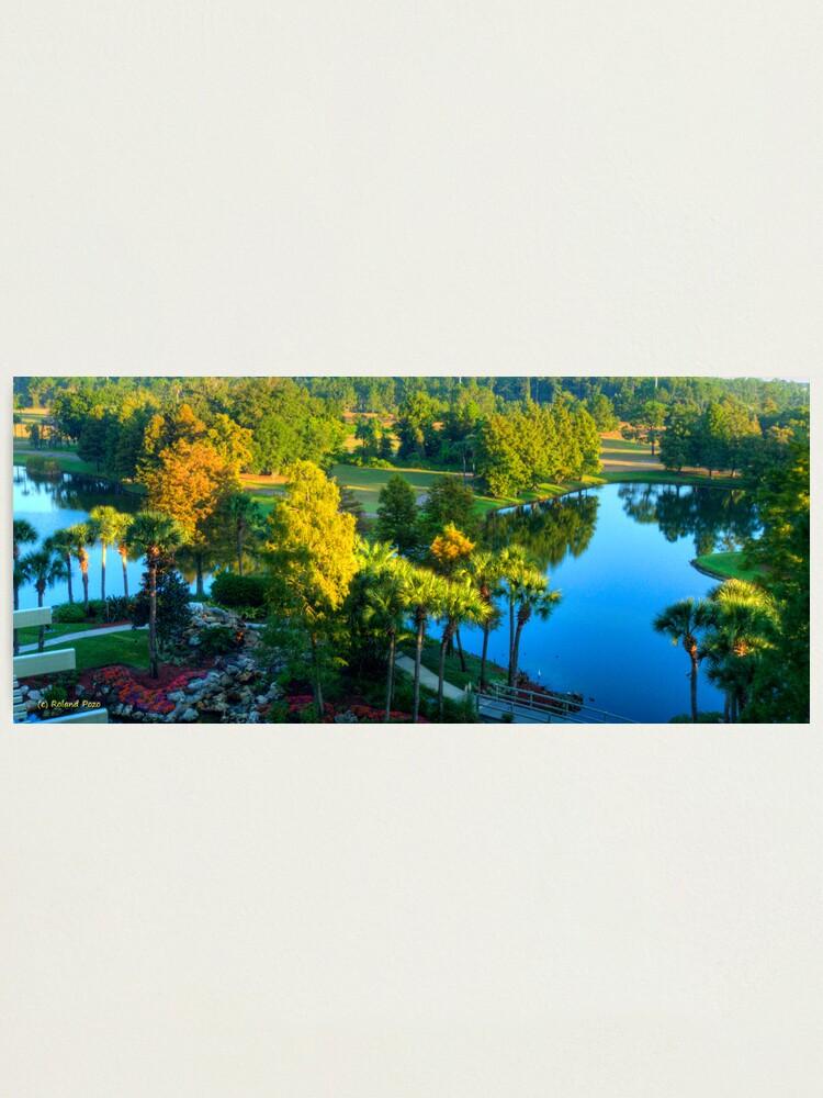Alternate view of Slice of Paradise Photographic Print
