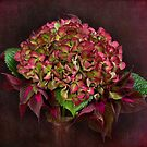 Passion Posy by Leslie Nicole