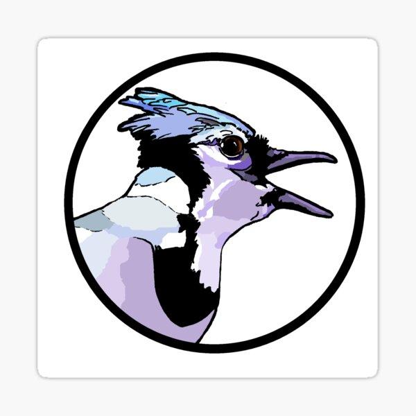 American Blue Jay Sticker