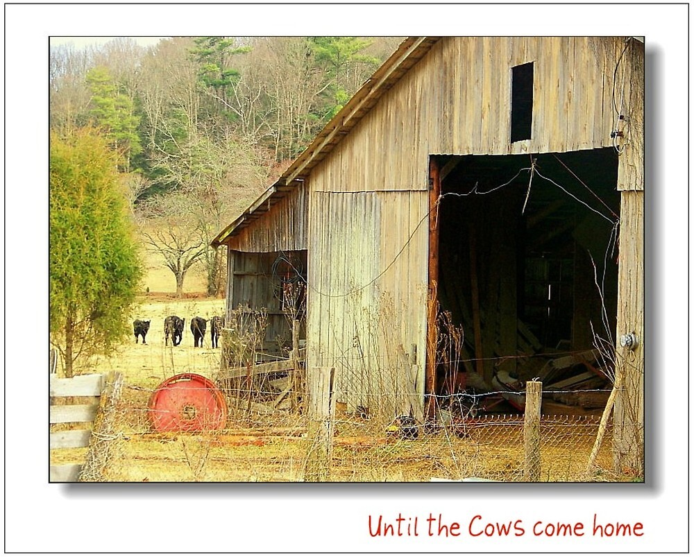 Until the Cows come Home by lynell