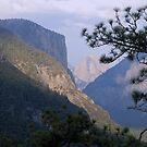 Yosemite Diagonals by Marie Theron