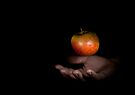 The Hand and the Apple by Matt Sillence
