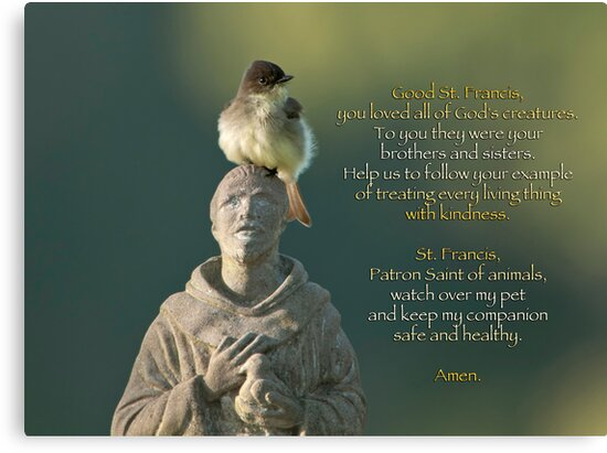 Prayer for Pets by Bonnie T.  Barry