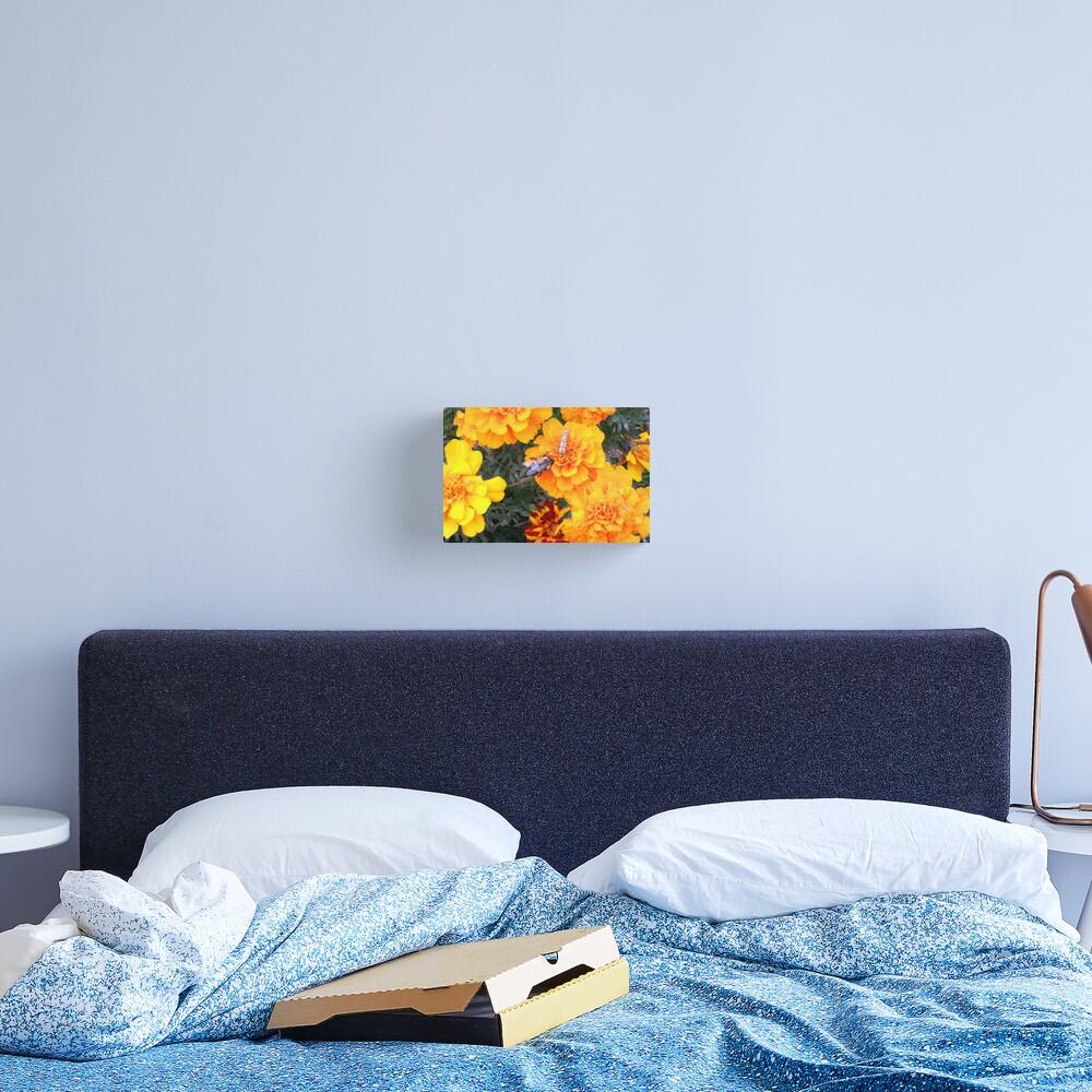 Sweet Abundance Canvas Print