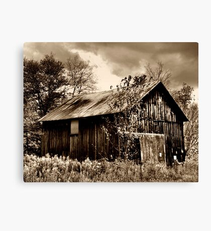 Sepia Barn Canvas Print