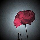 Dark Remembrance by Bel Menpes