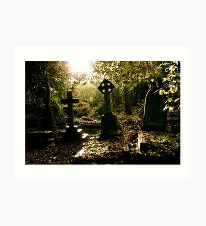Tombstones in Highgate Cemetery (West) Art Print