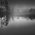 McNally Lake Again by Bill Spengler