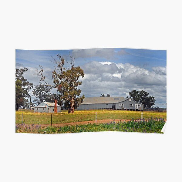 Tubbo Station Shearing Shed Poster