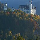 Neuschwanstein Castle by Andrew Doggett