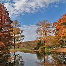 autumn at the manor by mikepaulhamus
