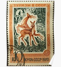 Foreign Tourism series in The Soviet Union 1970 CPA 3939 stamp Hunting Sika Deers and Wild Ducks cancelled  USSR Poster