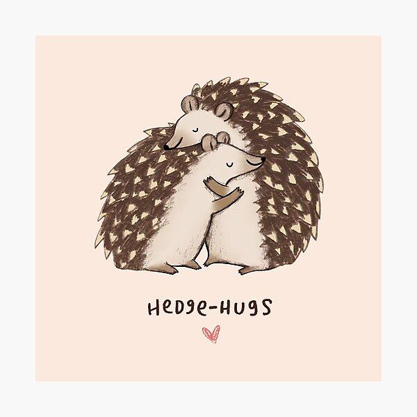 Hedge-hugs Photographic Print